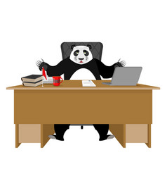 Chinese boss panda sitting in an office vector