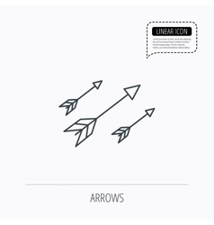 Bow arrows icon hunting sport equipment sign vector