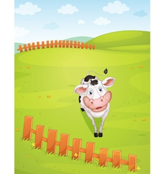 A cow vector image