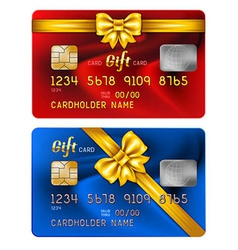 Credit card gift vector image