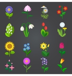 Flowers - set of colorful isolated icons vector image