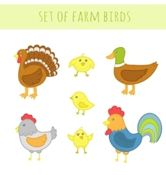Set of farm birds vector image