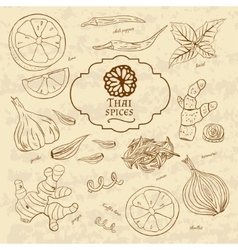 Set of spices cuisines of thailand on old paper in vector