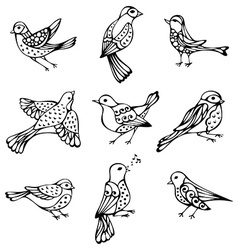 set of vintage birds vector image