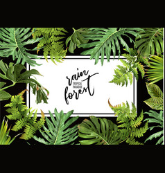 tropic horizontal banner vector image vector image