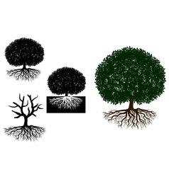 Big tree with roots vector image vector image