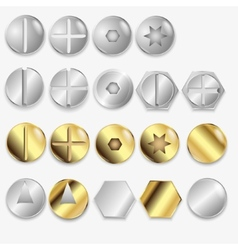Bolts and screws isolated vector