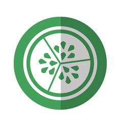 Cucumber vegetable seeds vector