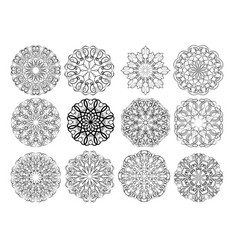 Set of elegant calligraphic circular lace design vector