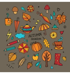 Set of different autumn elements vector
