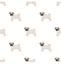 Bulldog single icon in cartoon stylebulldog vector