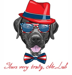 Hipster dog breed labrador retriever vector