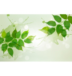Nature background with green spring leaves vector image