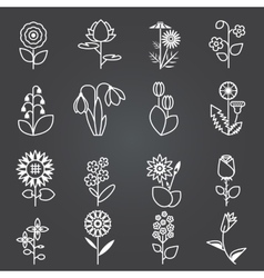 Flowers - set of isolated white line icons vector image vector image