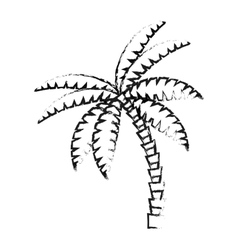 Isolated palm tree design vector image vector image