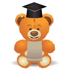 Teddy bear in graduation hat vector
