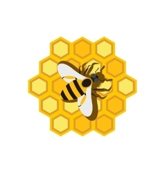 Honeycomb and bee flat icon vector