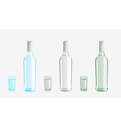 vodka bottle vector image
