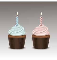 Birthday Cupcake with Whipped Cream and One Candle vector image