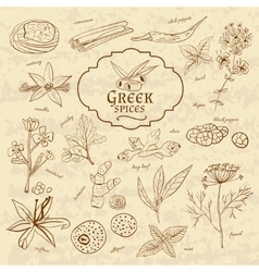 Set of spices cuisines greece on old paper in vector