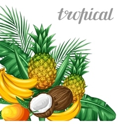 Background with tropical fruits and leaves design vector