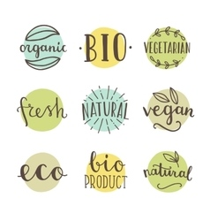 Bio organic natural set of hand drawn vector