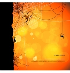 Autumn background with spiders and web vector image