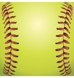 Closeup of a Softball vector image vector image