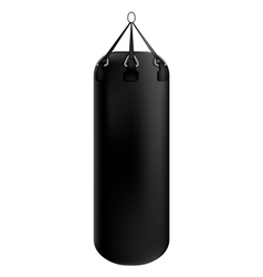 Punching bag on a white background vector image