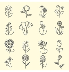 Flowers - set of isolated black line icons vector image