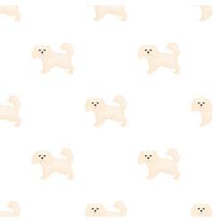 Spaniel single icon in cartoon stylespaniel vector