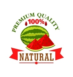 Watermelon fruit symbol for food design vector image