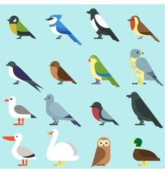 Different city birds icon vector image vector image