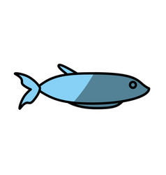 fish fresh food picnic shadow vector image