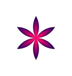 flower star vector image