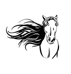 horse hand drawn llustration vector image vector image