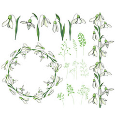 Round frame with pretty white snowdrops festive vector