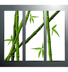 Banners with bamboo vector image