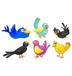 Birds with different colors vector