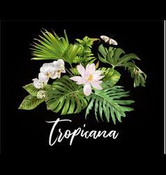 Tropicana plants compostion vector