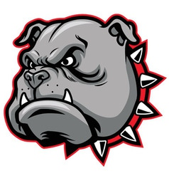 Bulldog head mascot vector image