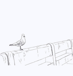 Seagull standing on a concrete bridge vector