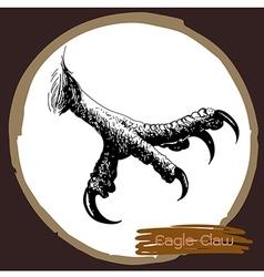 Eagle claw vector