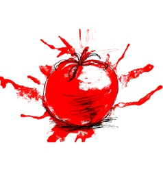 stylized of tomato vector image