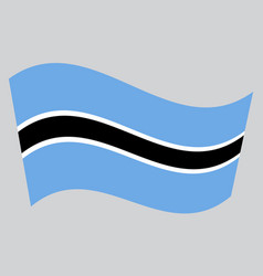 flag of botswana waving on gray background vector image