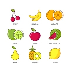 Organic natural fruit thin line icons set vector