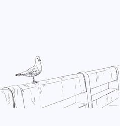 seagull standing on a concrete bridge vector image