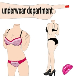 The department of womens underwear in a store vector