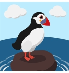 Cartoon puffin on a sea cliff color vector