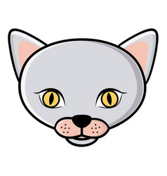 Color face cat icon vector